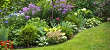 Landscape Projects for Every Budget