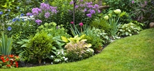 Landscaping for Every Budget
