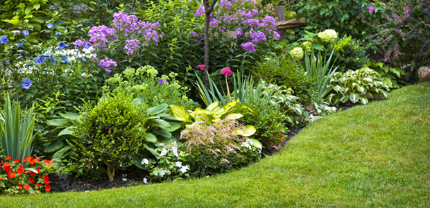 Landscaping Projects for Every Budget